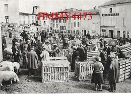 CPM - La Foire Aux Cochons En 1933 - La Vie D'autrefois - Ed. ARSENE Et DEMO - Scans Recto-Verso - Elevage