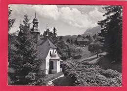 Modern Post Card Of Restaurant Hergiswald,Luzern,Lucerne,Switzerland,L58. - LU Lucerne