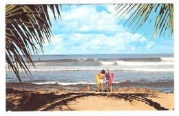 Surfing In HAWAII - Oahu