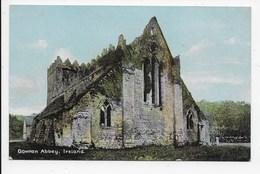 Gowran Abbey, Ireland - Christian Novels - Kilkenny