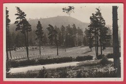 Wettstein ( Haut-Rhin , Alsace ) - Le Cimetière Des Chasseurs à Pied ( Voir Verso ) - Oorlogsbegraafplaatsen