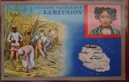 CPSM LA REUNION - COLONIES FRANCAISES FORMAT 9X14 - La Réunion