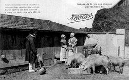 S2102 Cpa 18 Scènes De La Vie Des Champs Par Rameau Fils - Repas Des Cochons - France