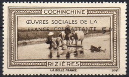 Vignette COCHINCHINE - RIZIERES (Oeuvres Sociales De La France Combattante) - Neuve Sans Charnière / Mint Never Hinged - Erinnophilie