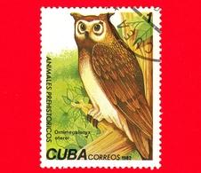 CUBA - Nuovo Obl. - 1982 - Animali Preistorici - Gufo - Ornimegalonyz Oteroi - Owl - 1 - Cuba