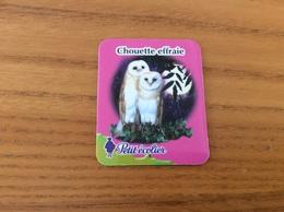 """Magnet Petit écolier """"Chouette Effraie"""" (oiseau, Rapace) - Magnets"""