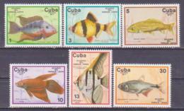 71-9780/ CUBA - 1977  FISHES  FISCHE  Mi 2202/07 ** - Kuba