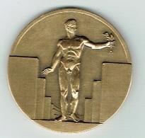 ESCH/ALZETTE Médaille C.A.1966/1976. - Other