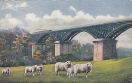 CORK , Ireland , 00-10s Chetwood Viaduct ; TUCK - Cork