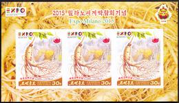 North Korea 2015 Expo Milano Kaesong Koryo Insam IMPERF MS VERY RARE - Corea Del Nord