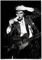 Johnny Hallyday - Palais Des Sports 1976 - Artisti