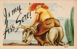 Comics Humor Comic Comique Humour - Fat Lady - Horse - Is My Ass Sore ! - No. DC-33 - 2 Scans - Humour