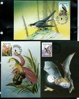 CM ( MB)  Des N° 2244/86 Année Européenne Environement  Obl: Ferrières  14/03/97 - 1985-.. Oiseaux (Buzin)