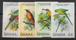 Ghana - 1981 - N°Yv. 700 à 703 - Oiseaux / Birds - Neuf Luxe ** / MNH / Postfrisch - Ghana (1957-...)