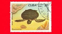 CUBA - Nuovo Obl. - 1983 - Tartarughe - Turtle - Chelonia Mydas - 30 - Cuba