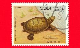 CUBA - Nuovo Obl. - 1983 - Tartarughe - Turtle - Chrysemys Decussata - 5 - Cuba