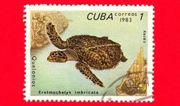 CUBA - Nuovo Obl. - 1983 - Tartarughe - Turtle - Eretmochelys Imbricata - 1 - Cuba
