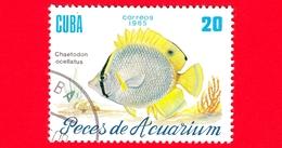CUBA - Nuovo Obl. - 1985 - Pesci - Vita Marina - Fish - Chaetodon Ocellatus - Pesce Farfalla - 20 - Cuba