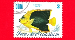 CUBA - Nuovo Obl. - 1985 - Pesci - Vita Marina - Fish - Holacanthus Tricolor - Pesce Angelo - 3 - Cuba
