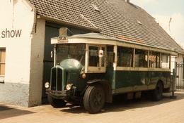 Bus, Omnibus, Autotron Lips, Rosmalen, Public Transport, Real Photo - Auto's