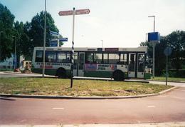 Bus, Omnibus, Rotterdam, Public Transport, Real Photo - Auto's