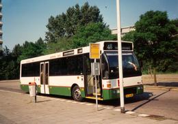 Bus, Omnibus,DAF, Carrosserie Den Oudsten, Rotterdam, Public Transport, Real Photo - Auto's