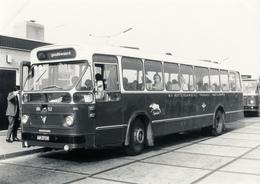 Bus, Omnibus, RTM 52, Spiesbok, Leyland-Verheul, Goudswaard, Public Transport, Real Photo - Auto's