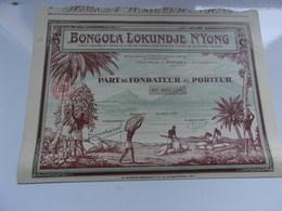 BONGOLA LOKUNDJE N'YONG (douala,cameroun) - Actions & Titres