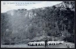 HAN SUR LESSE - Chemin De Fer De La Grotte Les Rochers De Faule - Oblitération Etoile Relais HAN - Rochefort