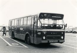 Bus, Omnibus,DAF/Hainje, Fram 489, West Terschelling, Public Transport, Real Photo - Auto's