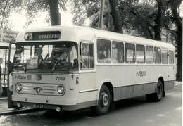 Bus, Omnibus,Leyland Van Hool, NBM Zeist, Public Transport, Real Photo - Auto's