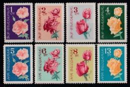 1962 Bulgaria Rose Roses Fiori Blumen Flowers Fleurs MNH** Fio234 - Rose