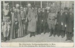 (Albanie) Shqipëria . Die Albanische Huldigungsdeputation In Wien . Erzherzog Max , Der Bruder Kaiser Karis . - Albania