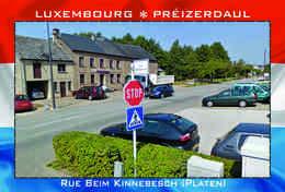 Carte Postale, REPRODUCTION, Préizerdaul (3), Redange, Luxembourg - Bâtiments & Architecture