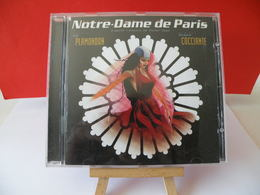 Notre Dame De Paris (Garou, Daniel Lavoie, Patrick Fiori) D'après L'oeuvre De Victor Hugo - (Titres Sur Photos) - CD - Musique & Instruments