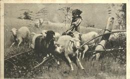 """4165 """"GUARDIANA DEL CAMPO-OPERA DI STEFANO BRUZZI """" CARTOLINA POST. ORIG. SPEDITA 1927 - Pittura & Quadri"""
