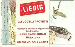 "4169 "" LIEBIG - GLI UCCELLI PROTETTI "" 6 FIGURINE ORIGINALI - Liebig"