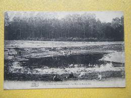 FONTAINEBLEAU. La Forêt. La Mare De Bois Le Roi. - Fontainebleau
