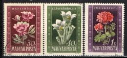 UNGHERIA - 1950 - FIORI - FLOWERS - USATI - Ungheria