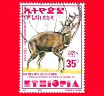 ETIOPIA - Usato - 2000 - Tragelafo Striato - Antilopi - Bushbuck Di Menelik - 35 (35 X 47 Mm) - Etiopia