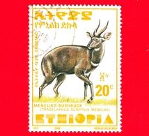 ETIOPIA - Usato - 2000 - Tragelafo Striato - Antilopi - Bushbuck Di Menelik - 20 (35 X 47 Mm) - Etiopia