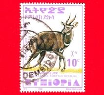 ETIOPIA - Usato - 2000 - Tragelafo Striato - Antilopi - Bushbuck Di Menelik - 10 (35 X 47 Mm) - Etiopia