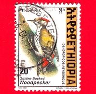 ETIOPIA - Usato - 1998 (1997) - Uccelli - Picchio - Abyssinian Woodpecker (Dendropicos Abyssinicus) - 20 - Etiopia