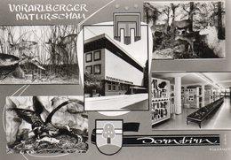 Dornbirn - Vorarlberger Naturschau - Dornbirn