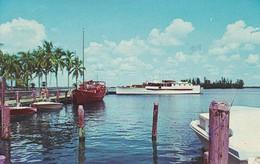 AK Florida - Fort Myers - Municipal Yacht Basin - Snug Harbor - Pleasure Craft At Rest (41654) - Fort Myers