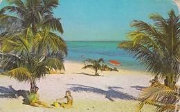 AK Grand Bahama - Freeport - Taino Beach (41655) - Ansichtskarten