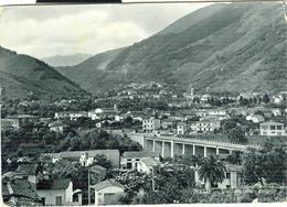 MASSA - VALLATA DEL FRIGIDO,B/N, VIAGGIATA 1964, TIMBRO POSTE MASSA,EDIZ. ZANNONI,PER SAN GIUSTINO(PERUGIA) - Massa