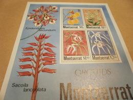 Miniature Sheet Montserrat Orchids 1985 - Montserrat