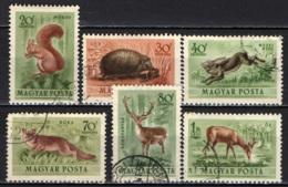 UNGHERIA - 1953 - ANIMALI SELVATICI - USATI - Posta Aerea