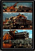 Logging Scenes Williams Lake British Columbia - Industry